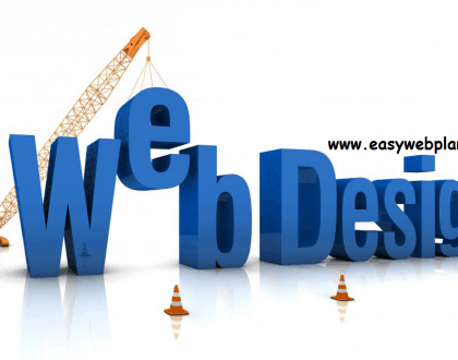 Website design company in Punjab