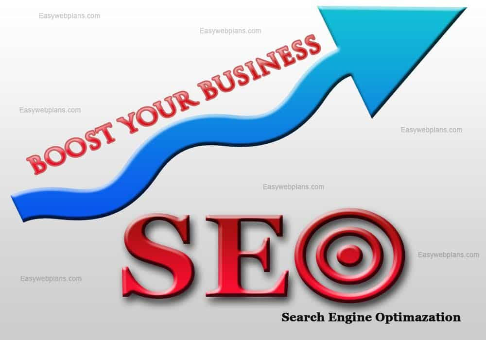 Best SEO Company in Punjab