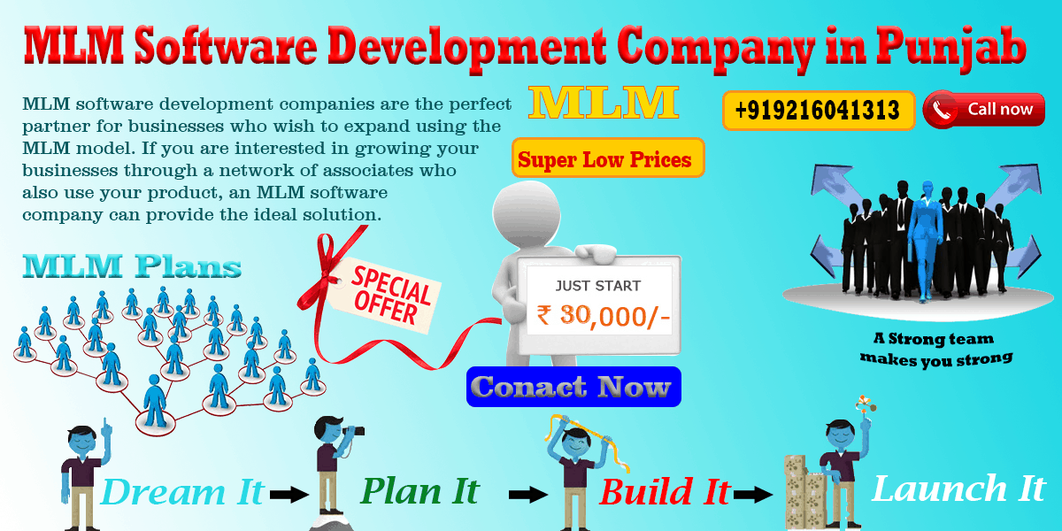 MLM Software Development in Punjab | MLM Patiala