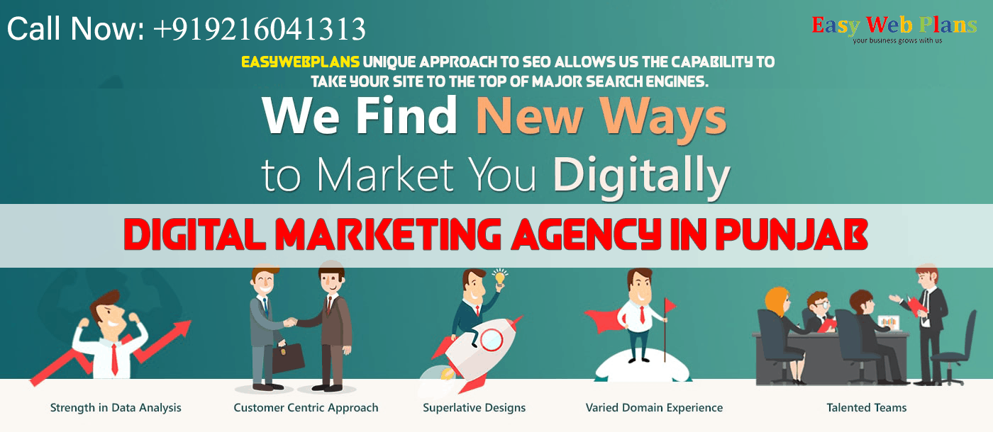 Digital Marketing Agency in Punjab
