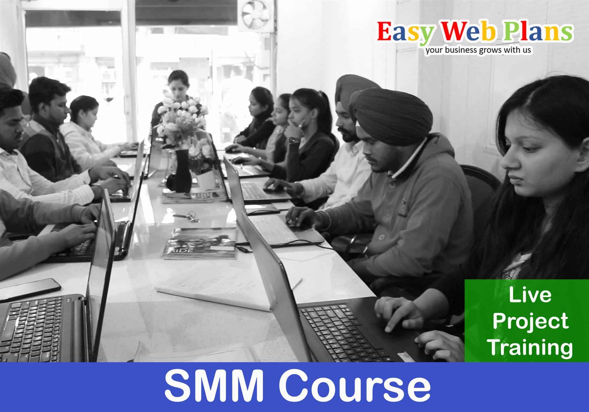 SMM Training in Patiala