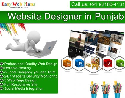 Website Designer in Punjab