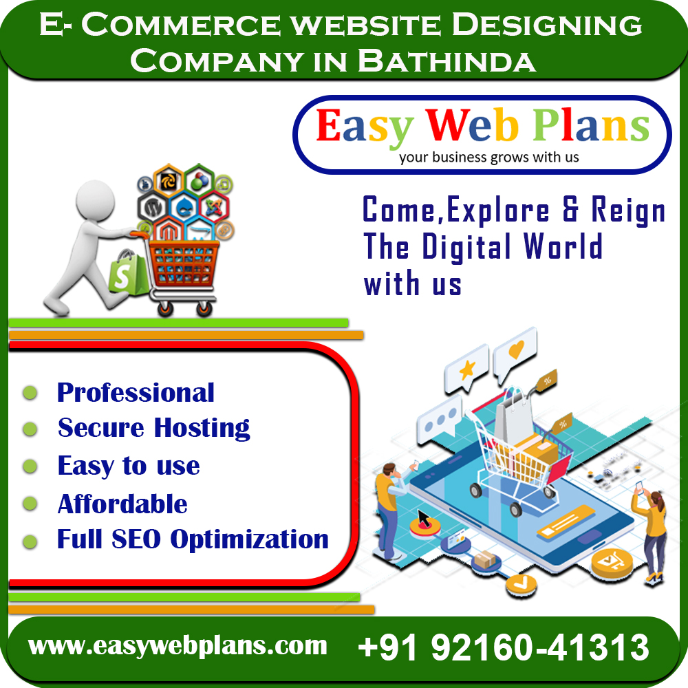 Ecommerce Website Design in Bathinda