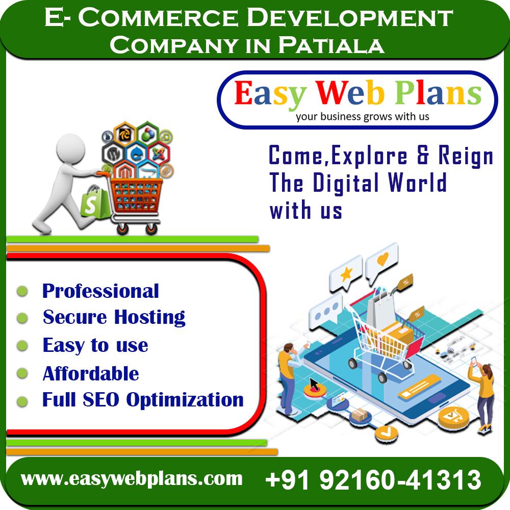 Ecommerce Website Design in Patiala