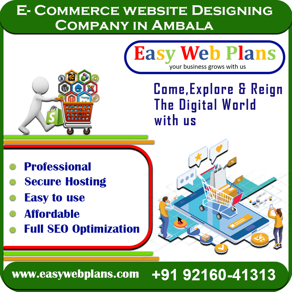 Ecommerce Website Design in Ambala
