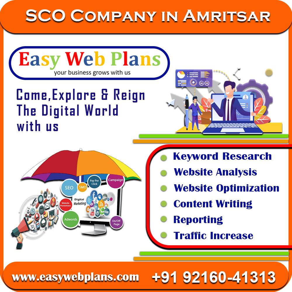 SEO Company in Amritsar