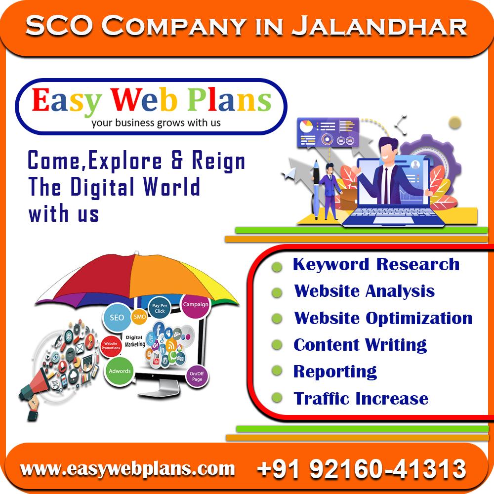 SEO Company in Jalandhar