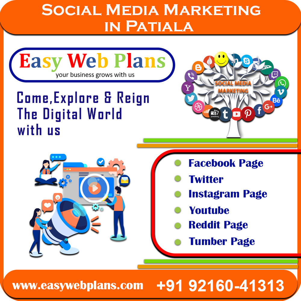 Social Media Marketing Services in Patiala